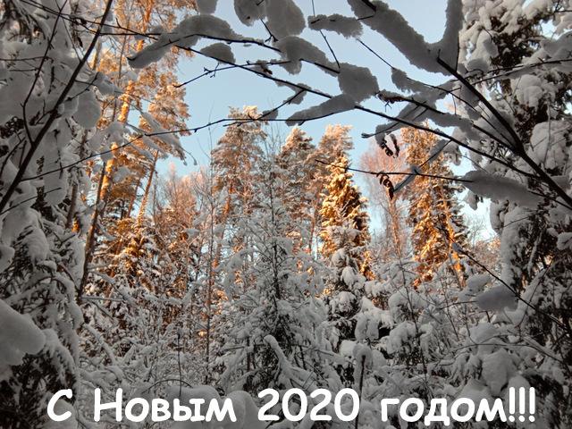 IMG_20181229_150716_2